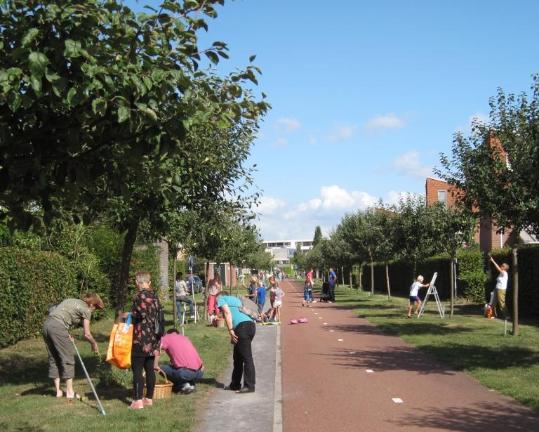 Jaarlijkse appelplukdag door Eetbaar IJsselstein